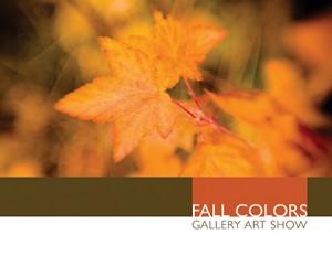 fall_colors2